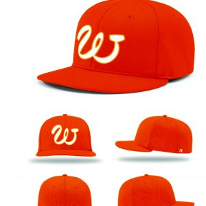 SUNS FITTED PLAYER CAP PTS40- RETAIL edc6dab781b3